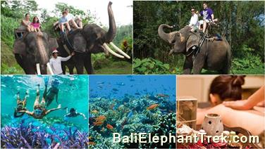 Bakas elephant ride package