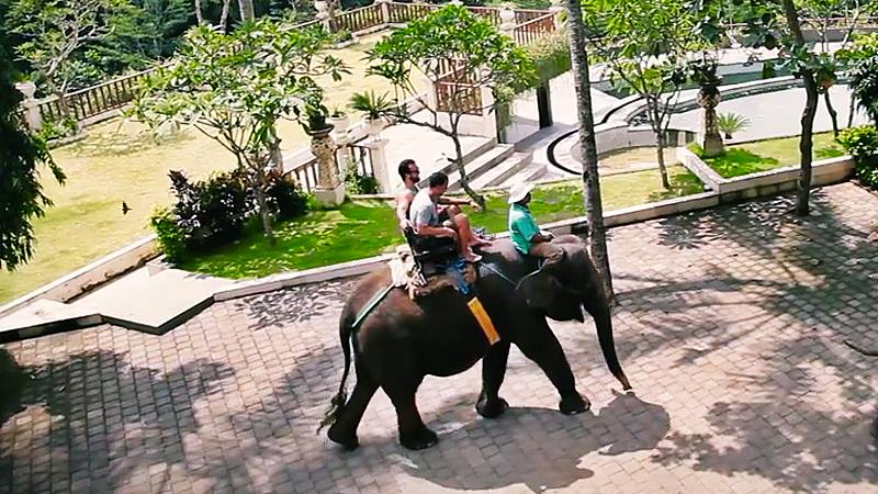 Tourist Attractions with The Elephant Bali 1