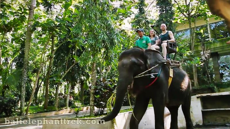Bakas Elephant Tour 1