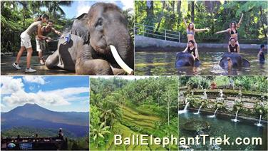 Favourite Combination Bali Elephant Packages 16