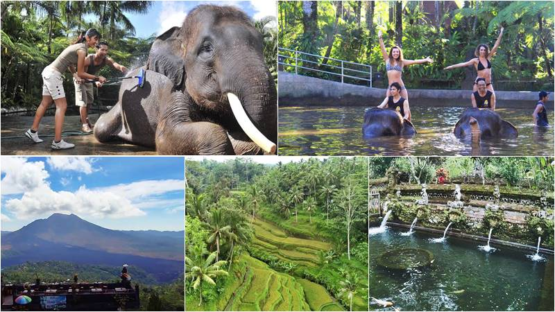 Bathing Elephant + Volcano Bali Tour 1