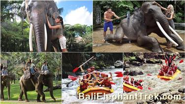 Favourite Combination Bali Elephant Packages 17