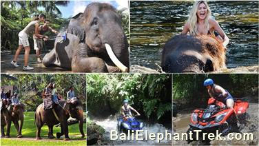 Favourite Combination Bali Elephant Packages 18