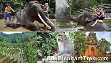 Favourite Combination Bali Elephant Packages 20