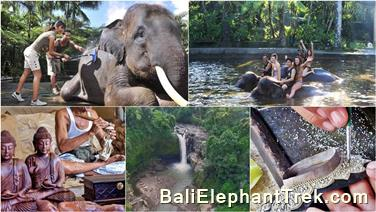 Favourite Combination Bali Elephant Packages 21
