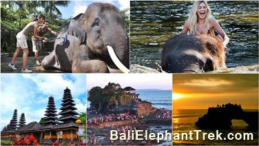 Favourite Combination Bali Elephant Packages 22