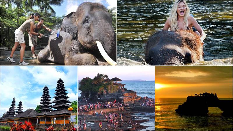 Bathing elephant and tanah lot tour