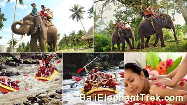 Favourite Combination Bali Elephant Packages 5