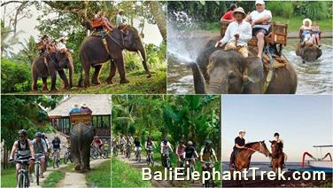Favourite Combination Bali Elephant Packages 6