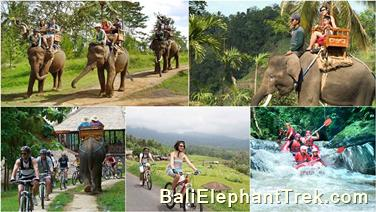 Favourite Combination Bali Elephant Packages 7