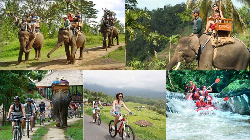 Bali Elephant Camp + Village Cycling + Ayung Rafting 2