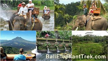 Favourite Combination Bali Elephant Packages 8