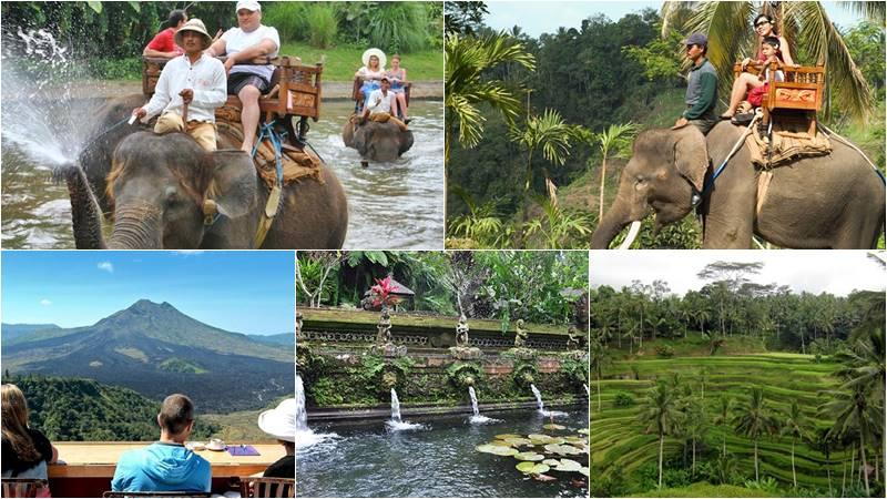 Bali Elephant Camp + Kintamani Volcano + Ubud Tour