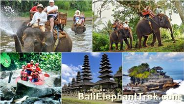 Favourite Combination Bali Elephant Packages 9