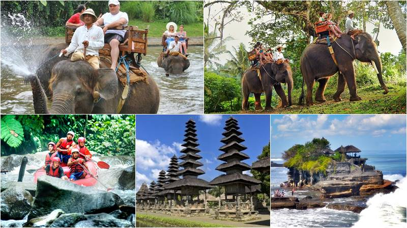 Bali Elephant Camp + Rafting + Tanah Lot Sunset 1