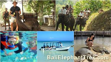 Bali Elephant Camp package