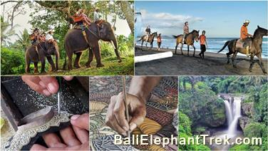 Favourite Combination Bali Elephant Packages 10