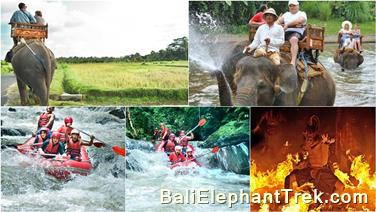 Favourite Combination Bali Elephant Packages 11