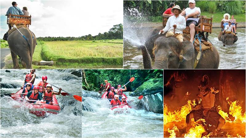 Bali Elephant Camp + Rafting + Kecak Fire Dance 1