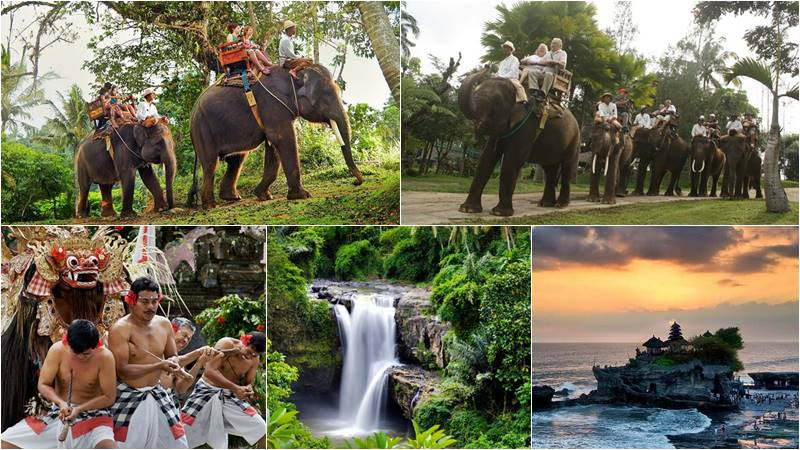 Bali Elephant Camp + Ubud + Tanah Lot Tour 1