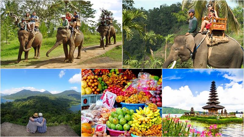 Bali Elephant Camp + Lake Temple Tour 1