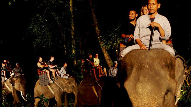 Enjoy Unique Experience of Riding an Elephant Ubud Bali 3