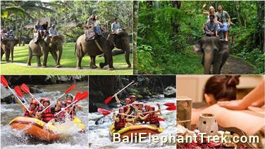 Favourite Combination Bali Elephant Packages 1