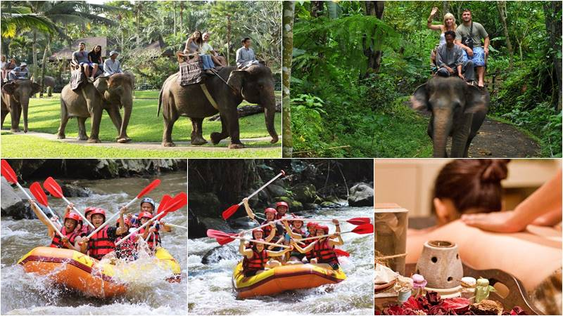 Taro elephant ride + ayung rafting