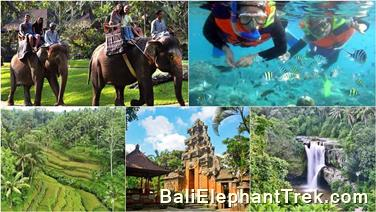 Favourite Combination Bali Elephant Packages 2