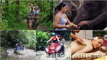 Favourite Combination Bali Elephant Packages 4